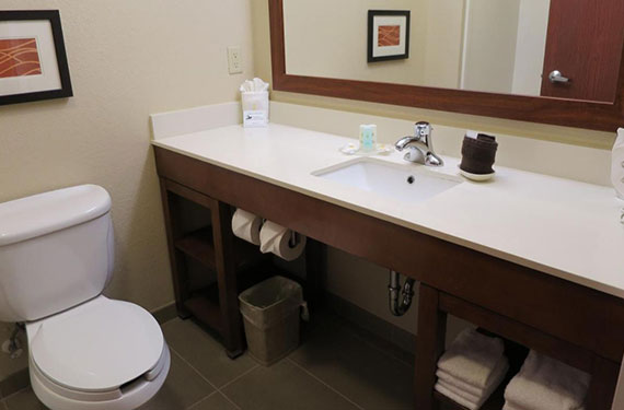 toilet, counter, sink, and mirror in a Comfort Inn & Suites Sanford hotel room bathroom'