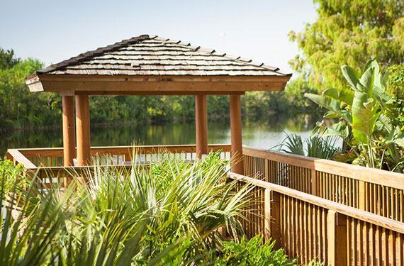 Lakeside deck at Marriott Lakeside Orlando Airport'