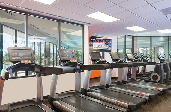 treadmills and ellipticals in Marriott Lakeside Orlando Airport fitness center'