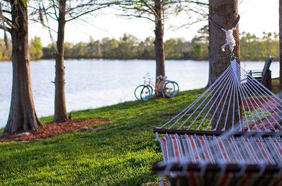 hammock next to the lake at Marriott Lakeside Orlando Airport hotel'